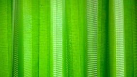 窗帘设计您绿色的例证 库存图片