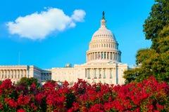 建立华盛顿特区美国国会的国会大厦 库存图片