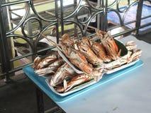 立即可食新鲜的螃蟹 库存照片