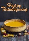 立即可食的感恩的自创南瓜饼 复制texte的空间 免版税库存照片