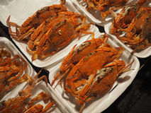 立即可食的螃蟹煮沸和 免版税库存图片
