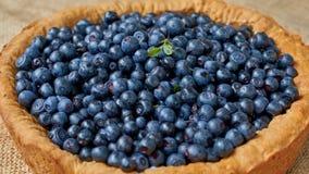 立即可食自创被烘烤的蓝草莓饼 夏天馅饼用新鲜的莓果 背景许多饺子的食物非常肉 免版税库存照片