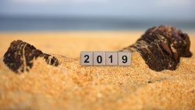 立方体在热带海滩的第2019年 免版税库存图片