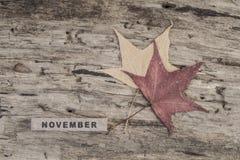 立方体日历在木背景的11月 库存照片