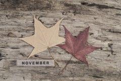 立方体日历在木背景的11月 免版税库存图片