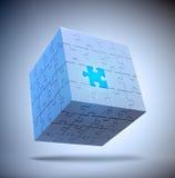 立方体状的难题 向量例证