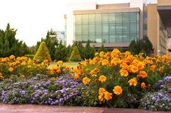 立陶宛议会大厦 库存图片