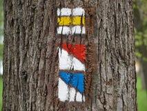 竖立路标在树的吠声的游人 免版税库存照片