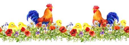 竖起雄鸡和小小鸡在草,花 无缝的模式 水彩 库存照片