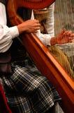 竖琴球员 免版税库存图片