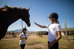 站立与一匹马的两个女孩在大农场 库存图片