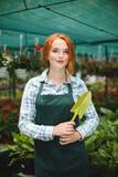 站立与一点庭院的围裙的俏丽的卖花人在手中铲起 梦想看在照相机的小姐,当与flowe一起使用时 免版税库存图片