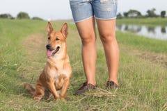 站立与狗的妇女 免版税图库摄影