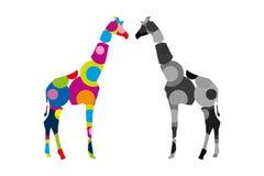 站立两头的长颈鹿面对面 五颜六色和灰色徒步旅行队动物 库存例证