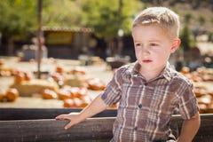 站立反对老木无盖货车的年轻男孩在南瓜补丁 库存图片