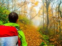 站立和看有雾的道路的年轻人在森林里 免版税库存照片