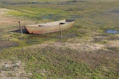 站立在一个干池塘的底部的小船 免版税库存照片