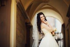 站立在一个老大厦的背景的典雅的华美的愉快的新娘在利沃夫州 图库摄影