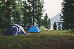 站立在一个草甸的一定数量的帐篷在森林 免版税库存照片