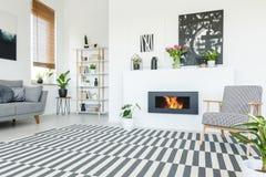 站立在一个镶边地毯的一把被仿造的扶手椅子的真正的照片和 库存照片