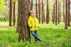 站立在一棵杉木的树干的附近小男孩在公园 免版税图库摄影