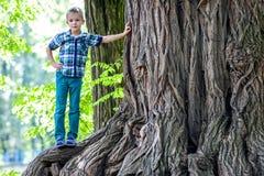 站立在一棵老树的一个大树桩的旁边小男孩 愉快的池氏 库存照片