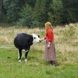站立在一头母牛附近的村庄妇女在草甸 免版税图库摄影