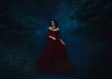 站立在一件红色礼服的美丽的女孩 库存图片