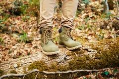 站立在下落的树干的远足者 免版税库存图片