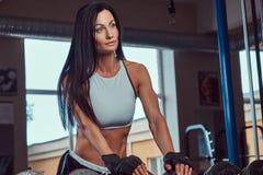 站立在与哑铃的柜台附近的运动服的美丽的性感的运动深色的女性在健身房 免版税库存照片