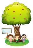 站立在与牌的树下的三个孩子 图库摄影