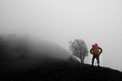 站立在与雾的小山的人 免版税库存图片