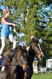 站立在两匹马的东英吉利骑马公平的马体操妇女 免版税图库摄影