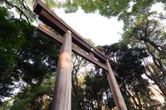 站立在入口的Torii门对美济礁津沽寺庙,东京 免版税库存图片