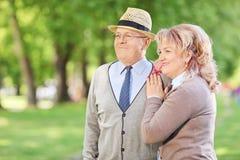 站立在公园的可爱的成熟夫妇 免版税库存图片