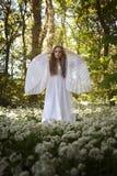 站立在加州的一个森林里的长的白色礼服的美丽的妇女 免版税图库摄影