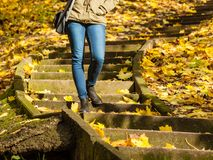站立在台阶的妇女在秋天公园 库存图片