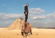 站立在吉萨棉金字塔前面的一头骆驼顶部的人在埃及 免版税库存图片