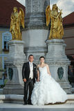 站立在喷泉前面的新婚佳偶 库存图片