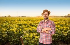 站立在土豆领域风景前面的愉快的农夫 免版税库存图片