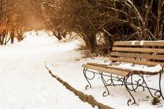 站立在基于的雪的长木凳山森林有美丽的景色 山的冬天森林 冬天landsc 免版税库存图片