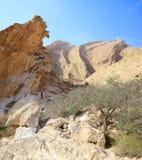 站立在奇怪的形状的沙漠峭壁附近的妇女 免版税图库摄影
