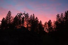 站立在小山顶部的山骑自行车的人在与树的日落 免版税库存图片