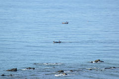 站立在小船的一个人在海洋 免版税图库摄影