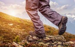 站立在山顶部和享受日出的远足者 免版税库存照片