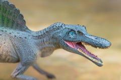 站立在岩石的灰色spinosaurus玩具 库存图片