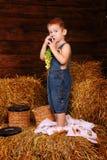 站立在干草的男孩的画象 免版税库存照片