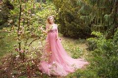 站立在开花的木兰的桃红色长的礼服的孕妇在森林里 库存照片