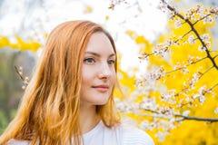 站立在开花的樱桃b附近的美丽的红发少妇 免版税库存照片