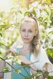 站立在开花的苹果树附近的年轻可爱的妇女, 库存图片